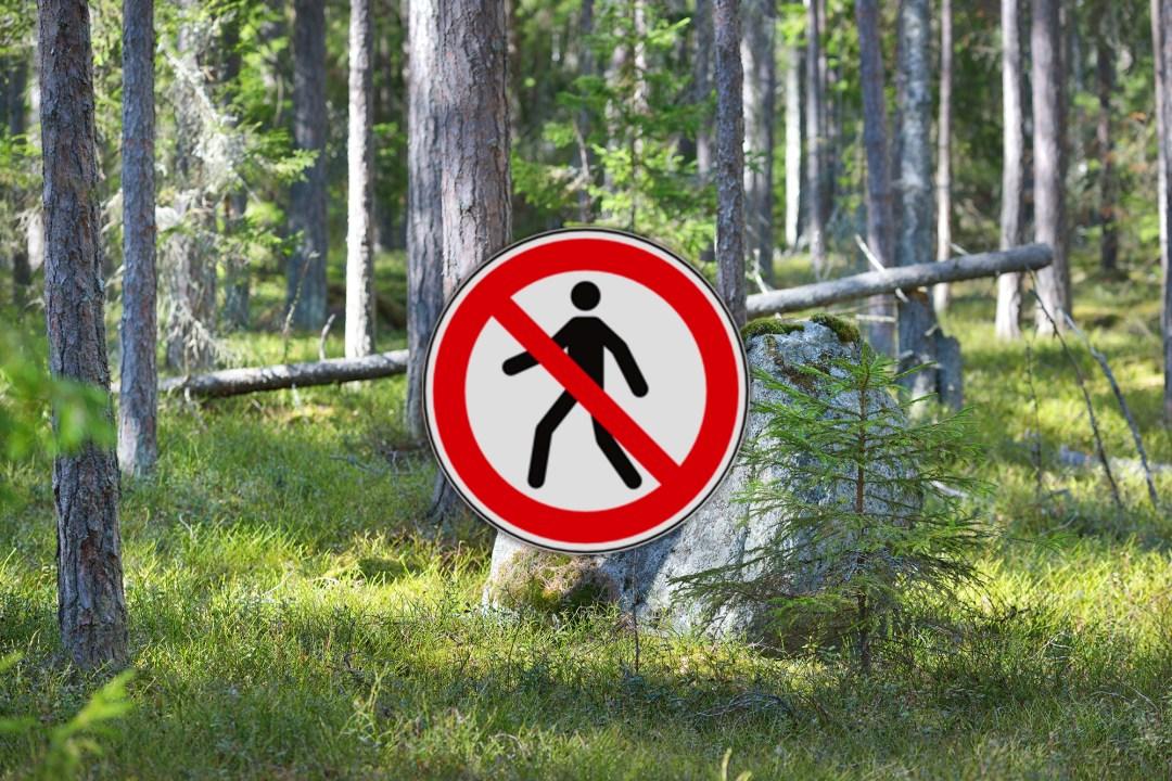 Waldbetretungsverbot nach Sturm Friederike: Viele Caches der GeoTour sind deshalb deaktiviert!