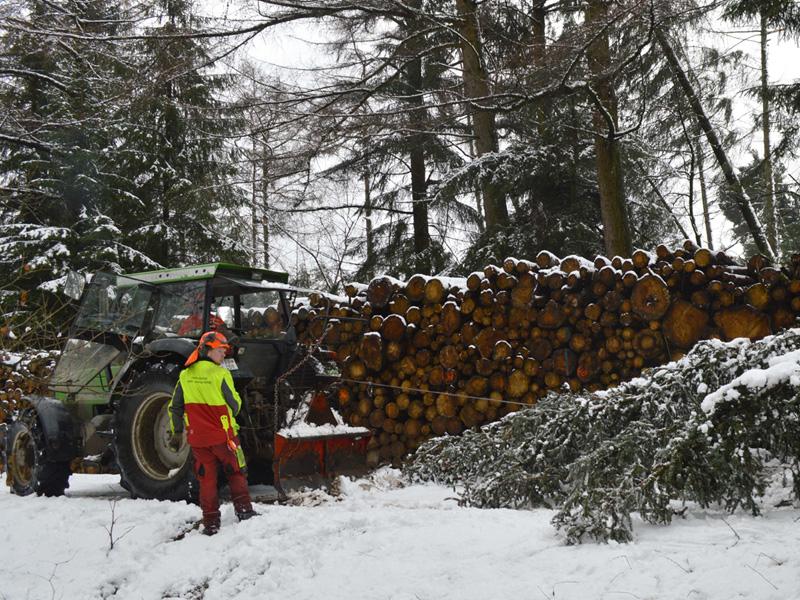 Ende der allgemeinen Waldsperrung im Gebiet des RFA Hochstift ab 1. März